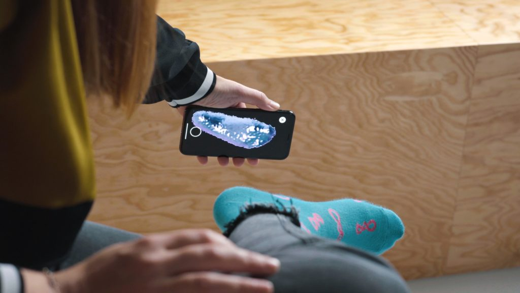 formigas shoefitter smartphone app
